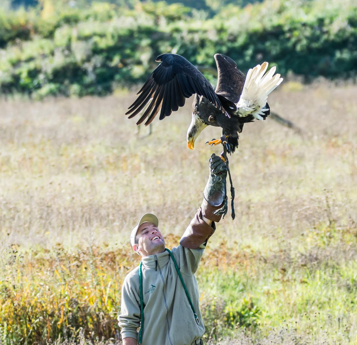 Cedric and Bald Eagle, Ian Holt