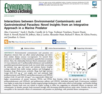 Publication of new study on the interaction between environmental contaminants and parasites in seabirds