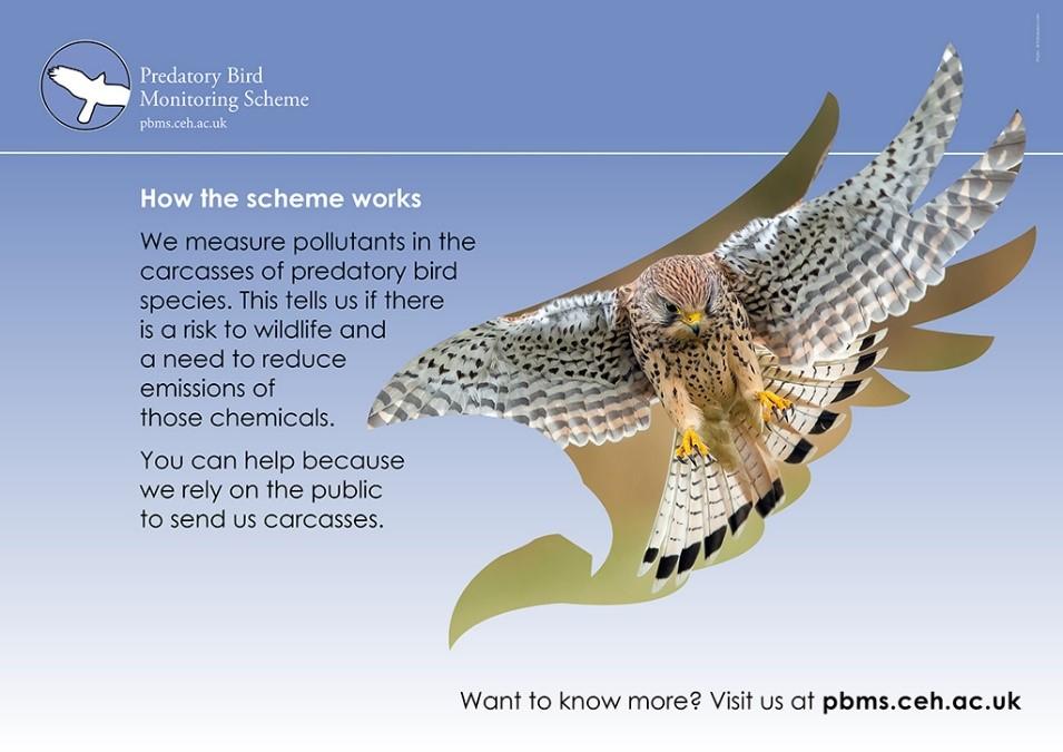 How the PBMS works